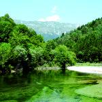 Corsi d'acqua in sicurezza_<em>Za varnost vodnih tokov</em>