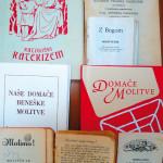 Katekizem v svojem jeziku je pravica_<em>Il catechismo nella propria lingua è un diritto</em>