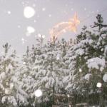 Zvezde žarijo za solbaški Božič_<em>Brillano stelle sul Natale di Stolvizza</em>