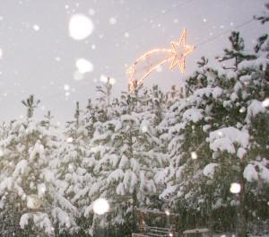 14La grande stella sotto la neve