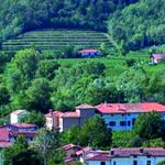 Pokalca in kultura v Prapotnem_<em>Schioppettino e cultura a Prepotto</em>
